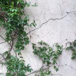 Come correggere cedimenti differenziali e crepe nel muro